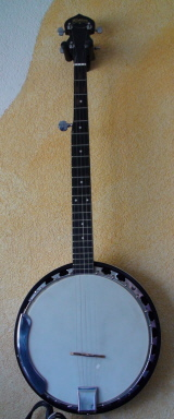 Washburn 5 String Banjo